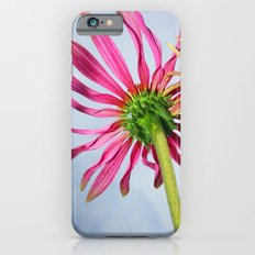 Looking Up Slim Case iPhone 6s