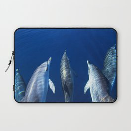 Playful and friendly dolphins Laptop Sleeve
