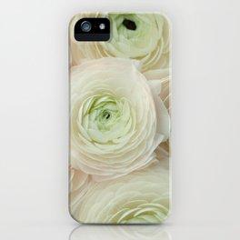 In Harmony iPhone Case