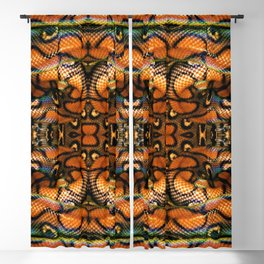 Rainbow Boa Blackout Curtain