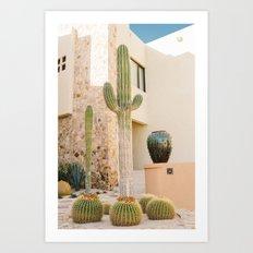 Cabo Cactus VII Art Print