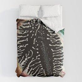 Bruise Comforters