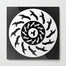 Circling Overhead Metal Print