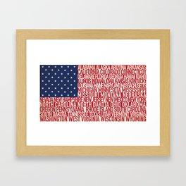 American Type Flag Framed Art Print
