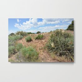 Dominguez-Escalante Ruins of the Anasazi, No. 7 of 7 Metal Print