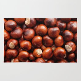 Shiny conkers Rug