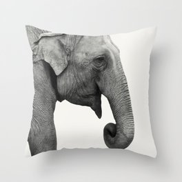 Elephant Animal Photography Throw Pillow