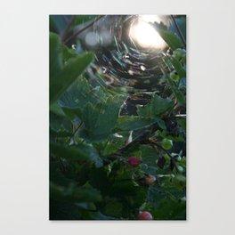 Soriamoria Canvas Print