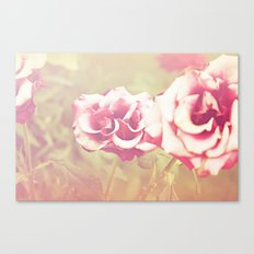roses of the setting sun Canvas Print