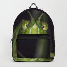 Curious Katydid Backpack
