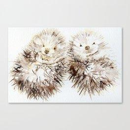 Hedgehog Cuddles Canvas Print