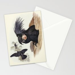 Vintage Parrot painting Stationery Cards