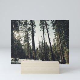 Winter Sequoia Forest Mini Art Print
