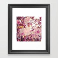 Blurry Blossoms Framed Art Print