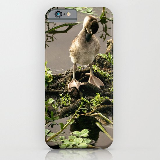 Ducklings iPhone & iPod Case