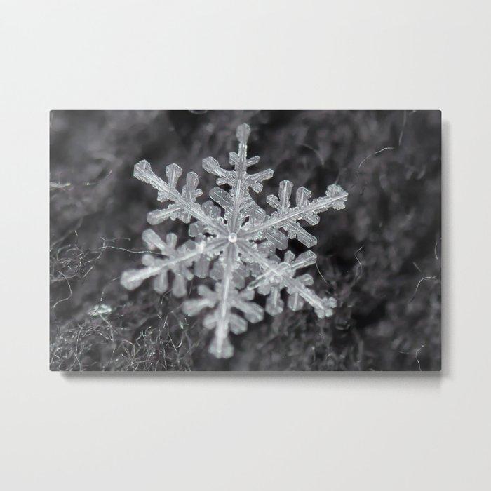Snowflake Closeup #1 Metal Print