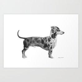 Dozer the Dachshund Art Print