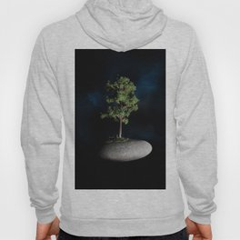 The First Sanctuary in Space Hoody