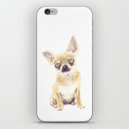 Chihuahua iPhone Skin