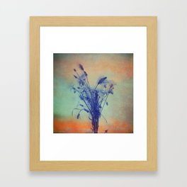 Small Beauties of Nature Framed Art Print