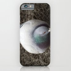 Pidge Slim Case iPhone 6s