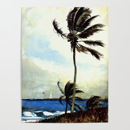 Palm Tree Nassau 1898 By WinslowHomer | Reproduction Poster
