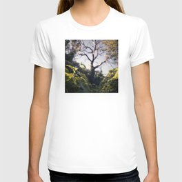 Old Tree, Color Film Photo T-shirt