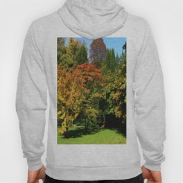 Autumn In The Arboretum Hoody