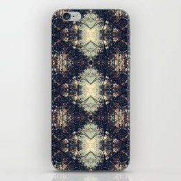 The Enchanted Forest No.10 iPhone Skin