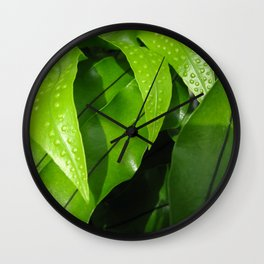 From the Conservatory #42 Wall Clock