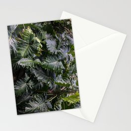 Phillip Stationery Cards