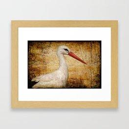 Mr. Stork Framed Art Print