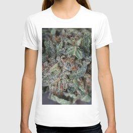 Master Kush Medical Marijuana T-shirt
