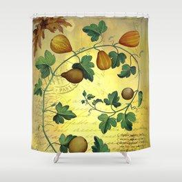 Vintage Botanical Collage, Autumn Pumpkins Shower Curtain