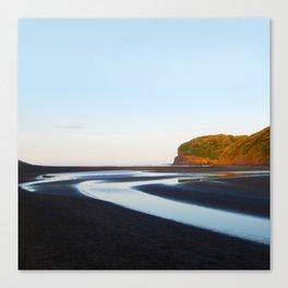 Black Sand Bethells Canvas Print