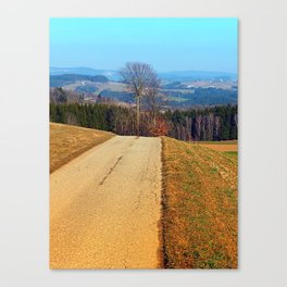 Tree in the middle of the road | landscape photography Canvas Print