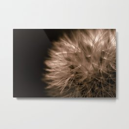 Just Enough Light Metal Print
