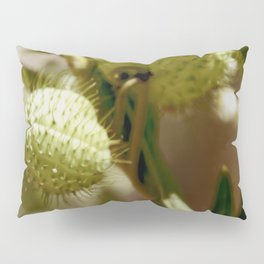 Fatty Prickle Pillow Sham