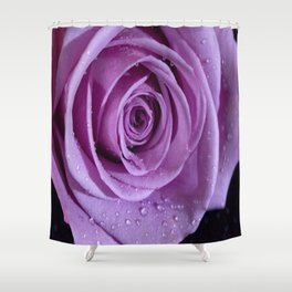 Purple Rose-3 Shower Curtain