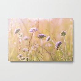 Purple Wildflowers Metal Print