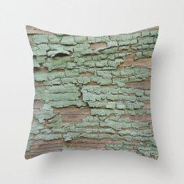 Shanty Throw Pillow