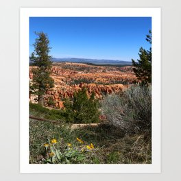 Wild  Nature of Bryce Canyon Art Print