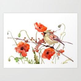 Cardinal Bird and Poppies, Poppy Flowers Art Print