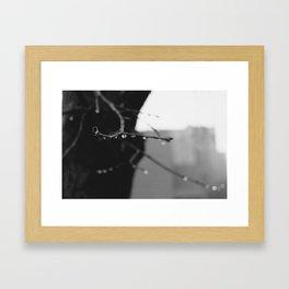 Suspension Framed Art Print