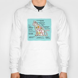 Cat Anatomy in Color Hoody