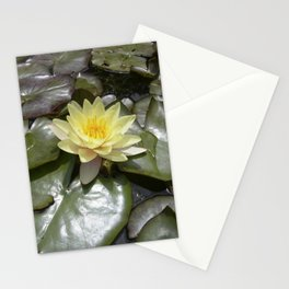 yellow water lily VII Stationery Cards