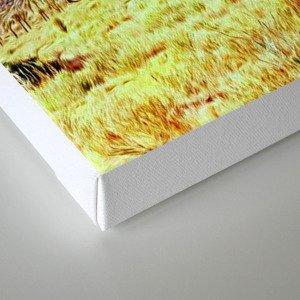Joshua Tree VG Hills by CREYES Canvas Print