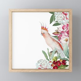 Vintage & Shabby Chic - Antique Pink Cockatoo With Tropical Flowers Garden Framed Mini Art Print