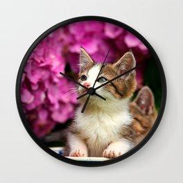 Kittens in bowl Wall Clock