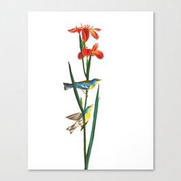 Bird & Red Flowers Canvas Print